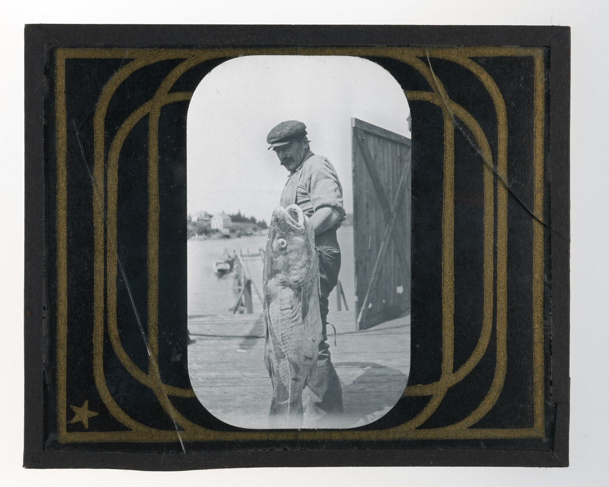 Frank Ross with Cod Glass Plate Negative 1, 1920