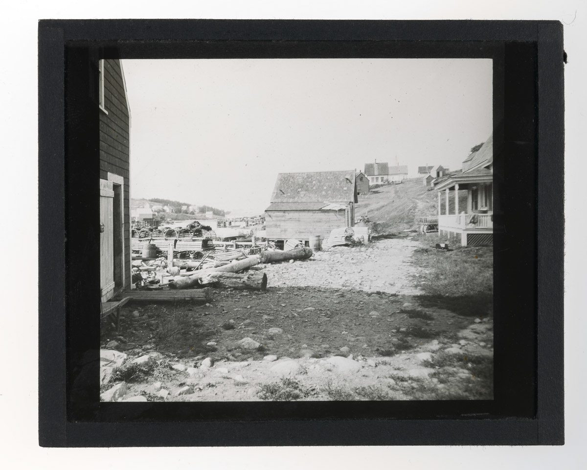 West Side of Frenchboro Glass Plate Negative, 1920