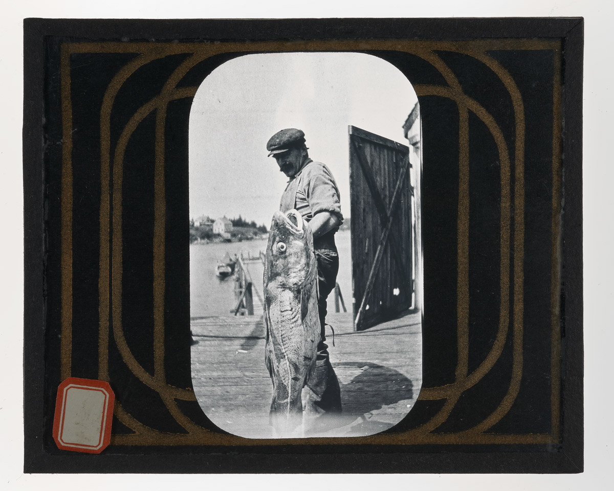 Frank Ross with Cod Glass Plate Negative 2, 1920